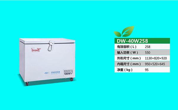 DW-40W258.jpg