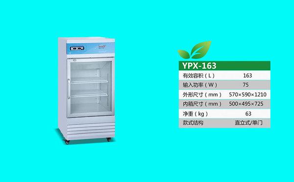 YPX-163.jpg
