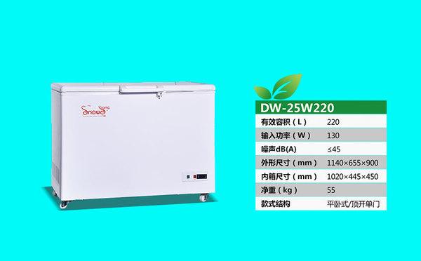 DW-25W220.jpg