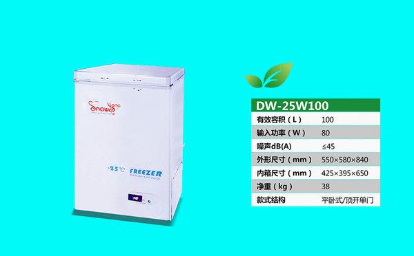DW-25W100.jpg