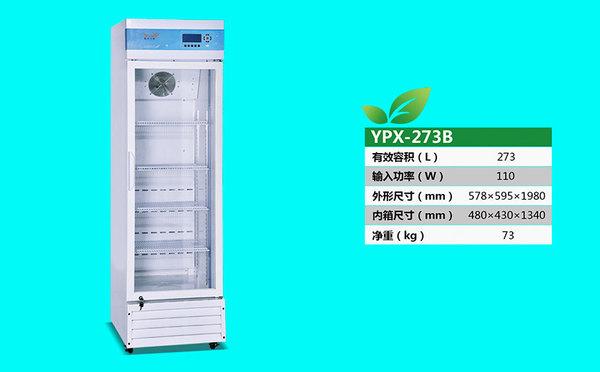 YPX-273B.jpg