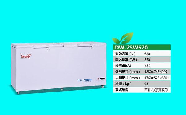 DW-25W620.jpg